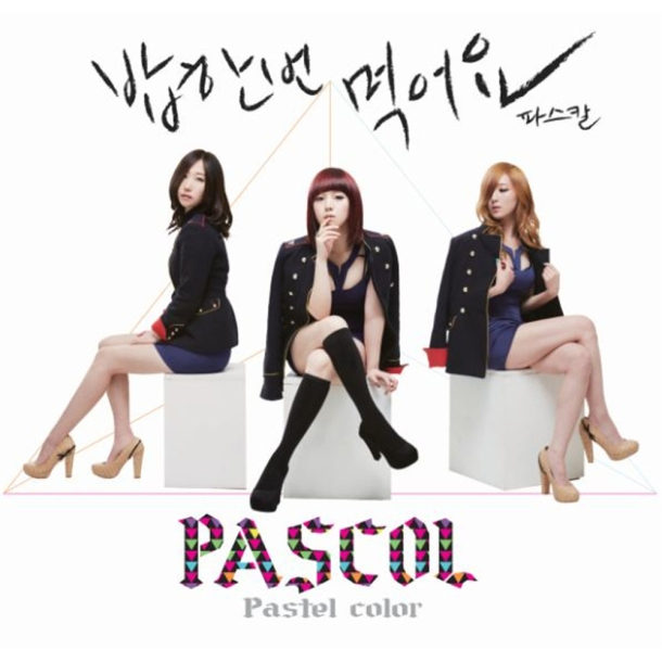 2013_pascol_paster color