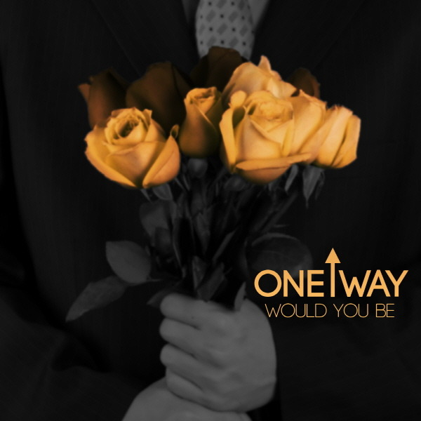 2013_one way_would you be